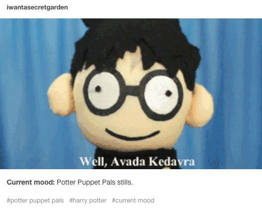 current mood: Potter Puppet Pals stills