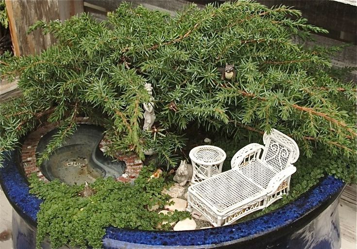 Annual Miniature Garden Contest, 2012