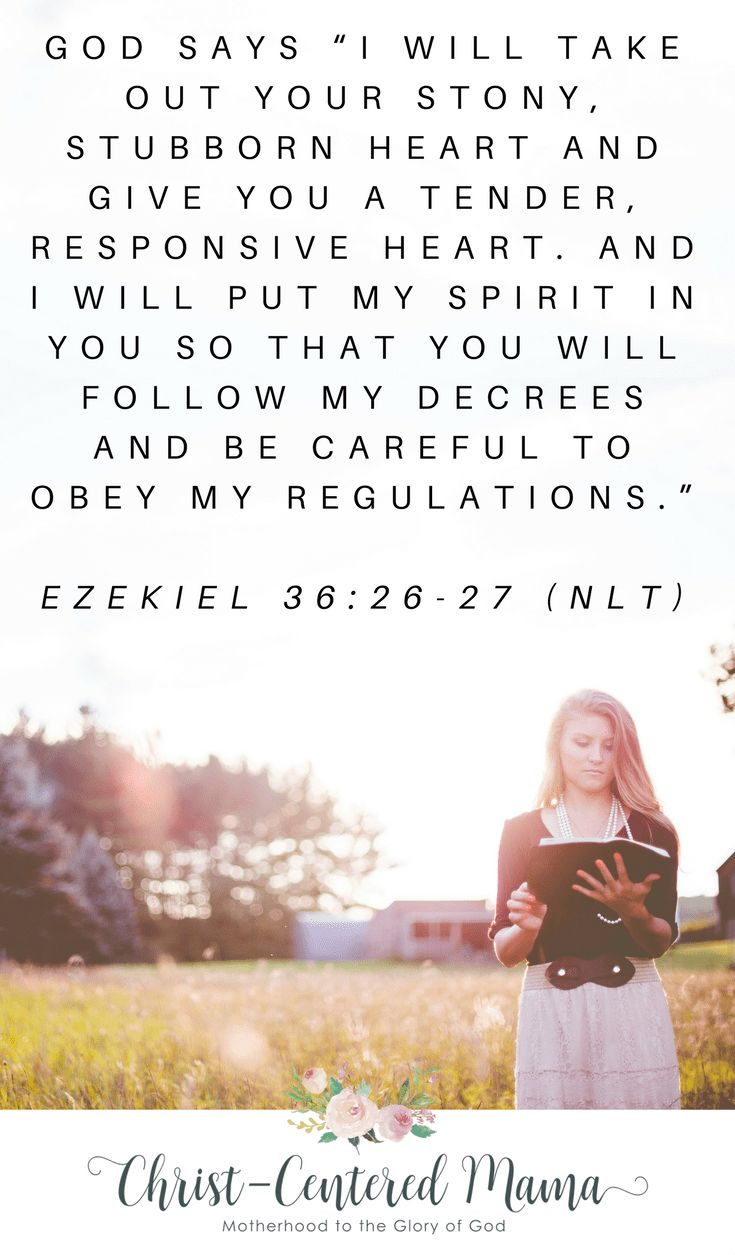 Teach.12 Things the Holy Spirit Does For You Christ-Centered Mama Christian Devotional Blog Jesus Bible Gospel Focused Christian Women Intercede. Sanctify. In almost every instance that the Holy Spirit is mentioned, He is doing. He is present in the Genesis story in creating both humanity and the world around us. Ezekiel 36:26-27 12 Things the Holy Spirit Does For You Christ-Centered Mama Christian Devotional Blog Jesus Bible Gospel Focused #christian #bibleverse #Women