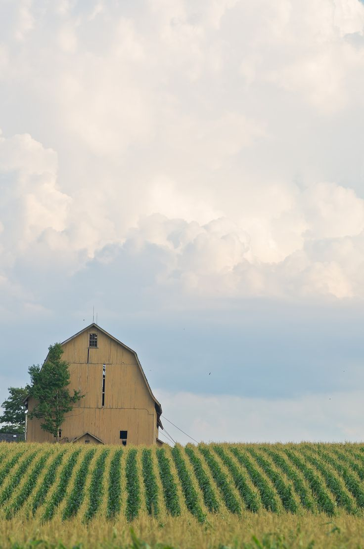 nice shot with barn - clouds,  Bing Images