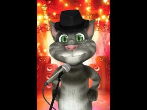 gato tom cantando rata inmunda pin o whatsapp q - YouTube