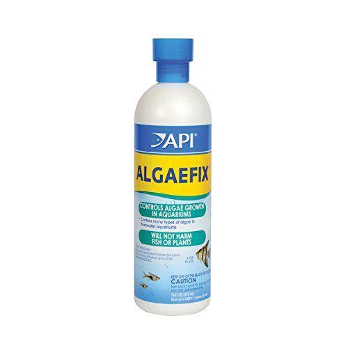 API ALGAEFIX Algae Control Solution