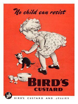 Birds Custard,♥ Girl Stroking Kitten, Advertisement 1940s