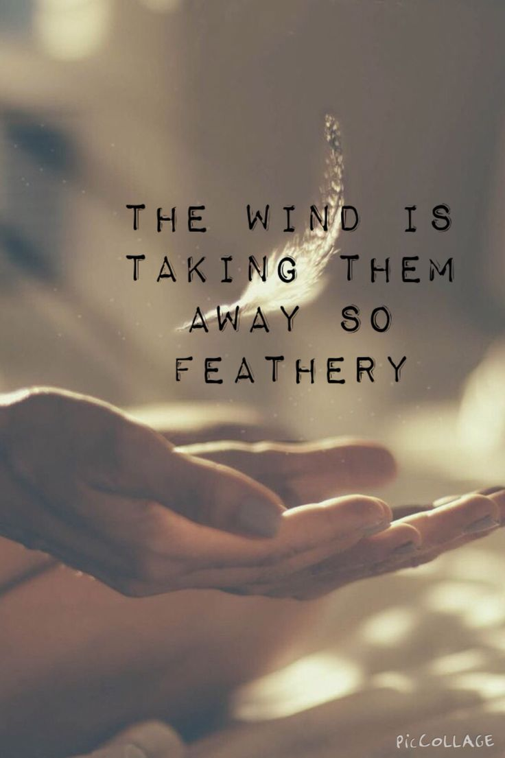 Feathery-Milky Chance