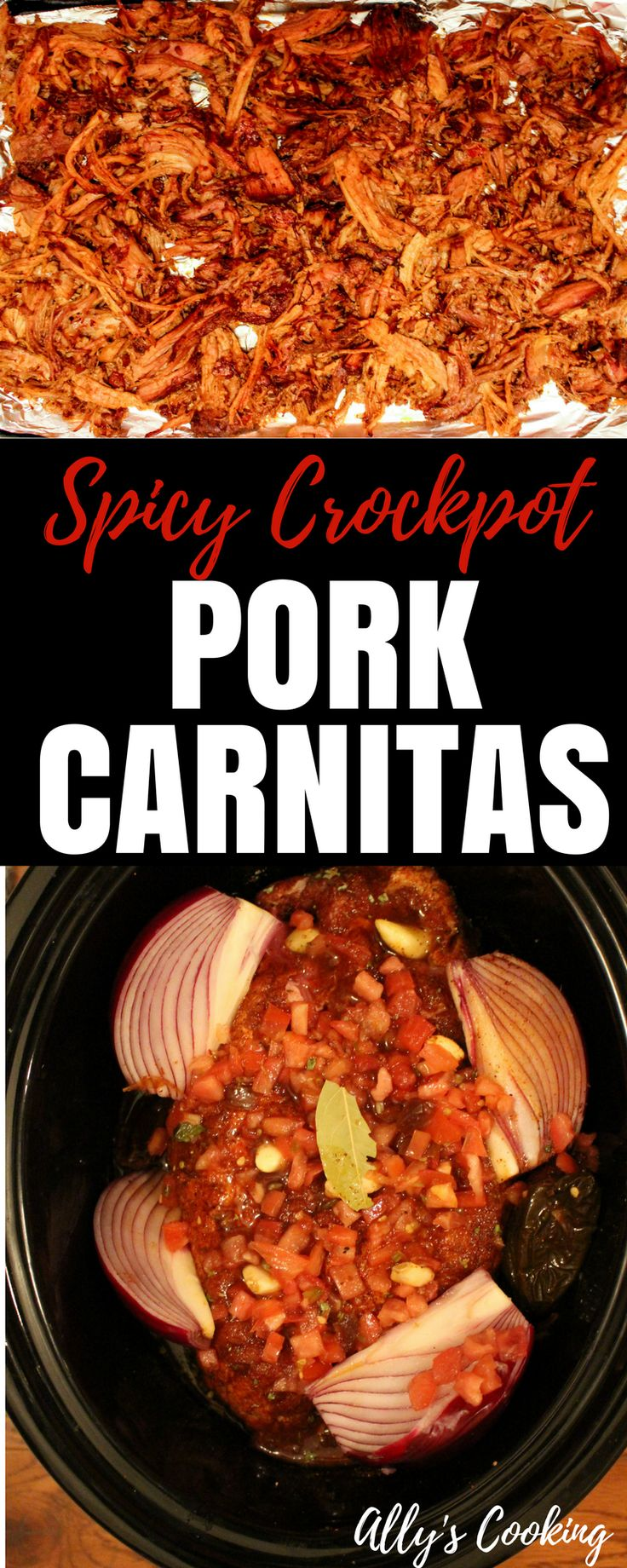 Spicy pork carnitas recipe