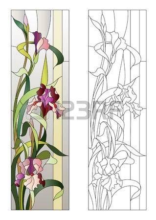 vitral: estampado de flores para la vidriera con lirios en flor