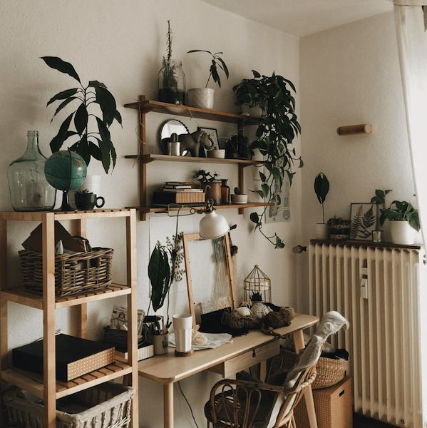 Plants Boost Productivity, Which Is Why You Should Always Integrate Them  Into Your Home Office