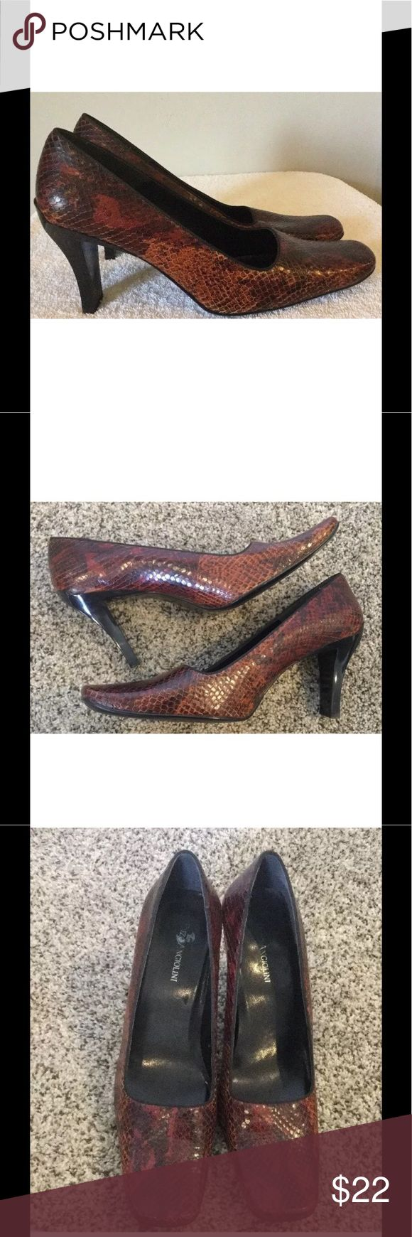 ENZO Angiolini Leather Python Pumps 9.5M ENZO ANGIOLINI Women's 9.5 M Genuine Leather Python Print Pumps  • Square toe, slip on  • Black soles and block heel incorporated into sole, not a separate piece.  • Genuine leather with python snake pattern, primarily dark orange with some brown & red  • Excellent condition - Minor scuffs - very clean condition inside & on soles & heels please inspect photos  • No box Enzo Angiolini Shoes Heels