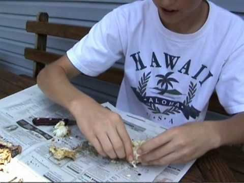 How to eat / pick Blue Crabs the RIGHT WAY!!! Excellent technique!