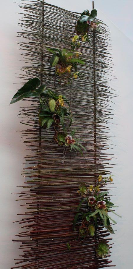 Katharina Stuart Floral Art + Design created this lovely wall installation utilizing orchids and succulents, reminded me of a stone wall in ...