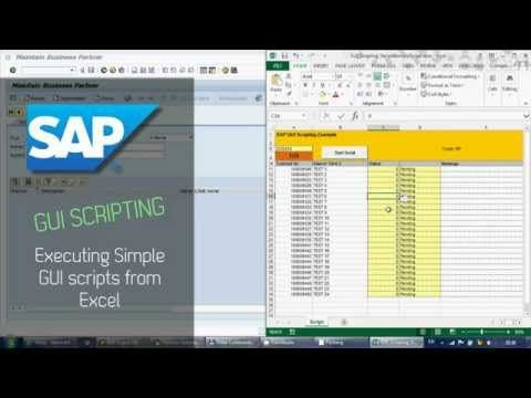 SAP GUI Scripting 1 - Running scripts from Excel  #process automation