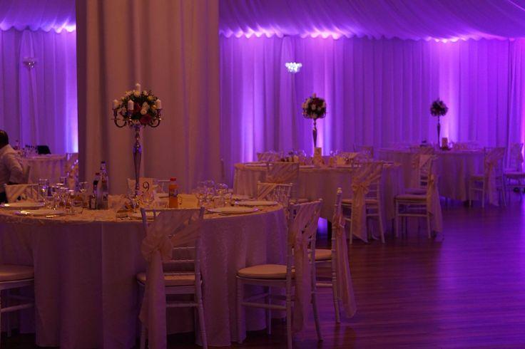 Lumini ambientale pentru nuntă la cort Levisticum