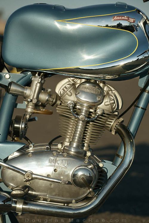 Ducati engine under jelly mold tank.Pinned for the tank. Interesting.