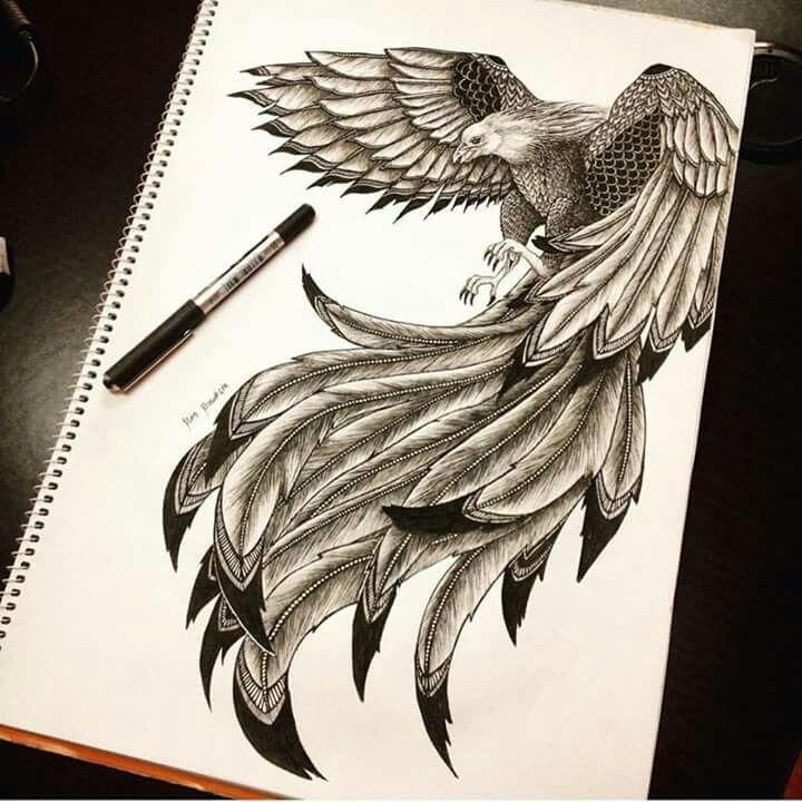 Hermosa ilustración de un ave. Ilustraciones.org