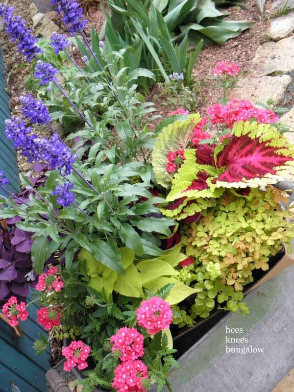 For Deep Planters, Layer The Bottom With Old Cans And Cheap Plant Pots To  Save