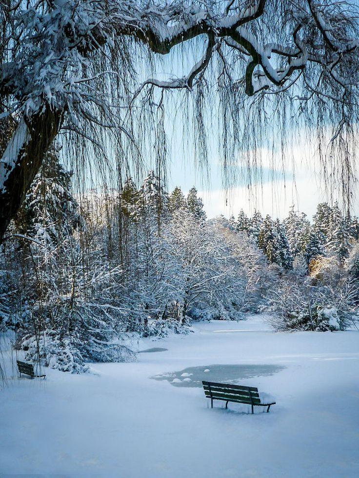Snowfall on Lost Lagoon, Vancouver, Canada.