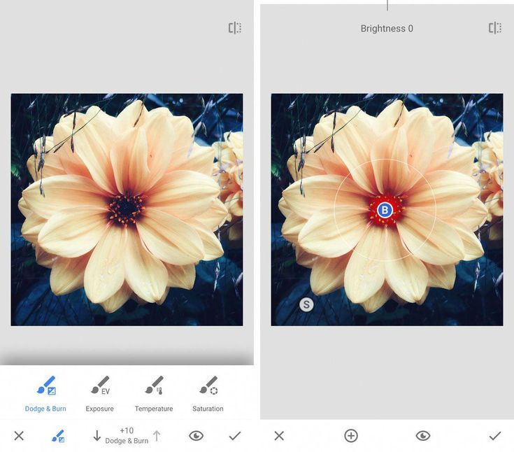 Best Photo Apps For iPhone Snapseed polaroidpictures