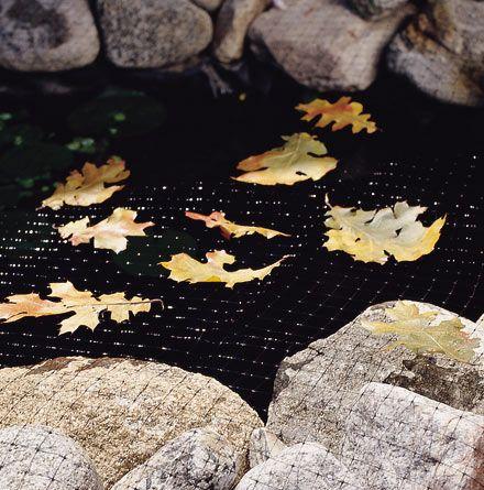 Laguna pond netting protects koi from pond predators and for Koi fish predators