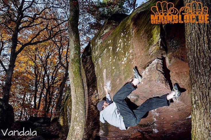 Guten Rutsch und viel grip für 2017  .... Pfalz - Kalmit - Vandala - 7a .... #pfalz #kalmit #vandala #7a .... #bouldern #klettern #bouldering #climbing #timetoclimb #bouldering_pictures_of_instagram #climbing_pictures_of_instagram  #climbing_is_my_passion #climb #escalada #photooftheday #nature #fun #nofilter #outdoor #climbingisfun #great #love  #mainbloc