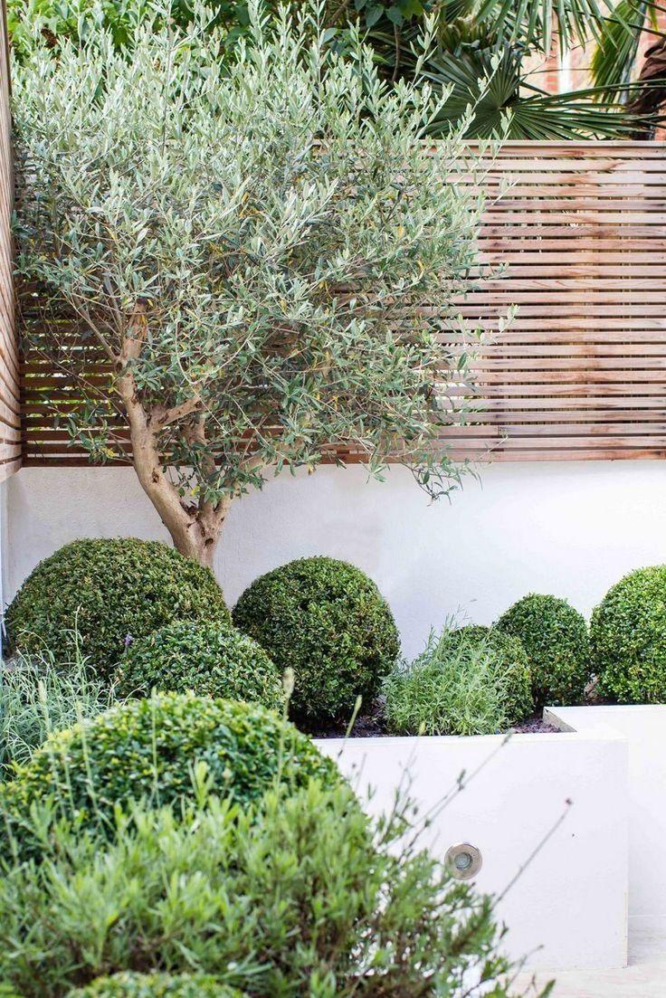 63 Contemporary Garden Design Alteration And Refurbishment 640 x 480
