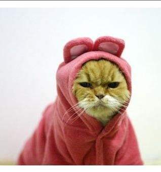 """""""Seriously. I'm not diggin this jacket."""""""