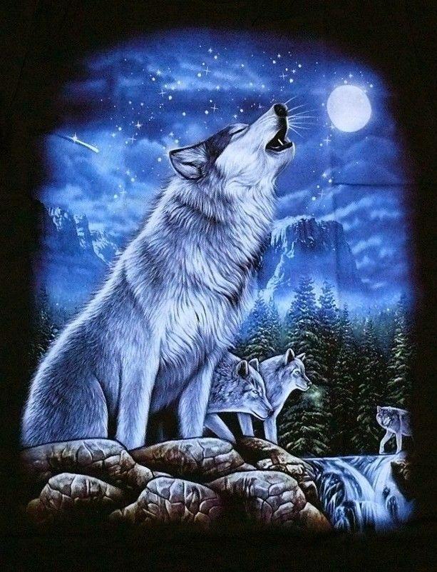 T-Shirt: Wolf heulend, Wölfe Mond, Gr.S,M,L,XL, Biker USA Trucker, Indianer USA | eBay