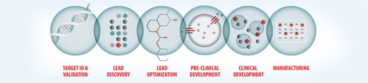 Translational Research Solutions for Drug Discovery & Development | Sigma-Aldrich