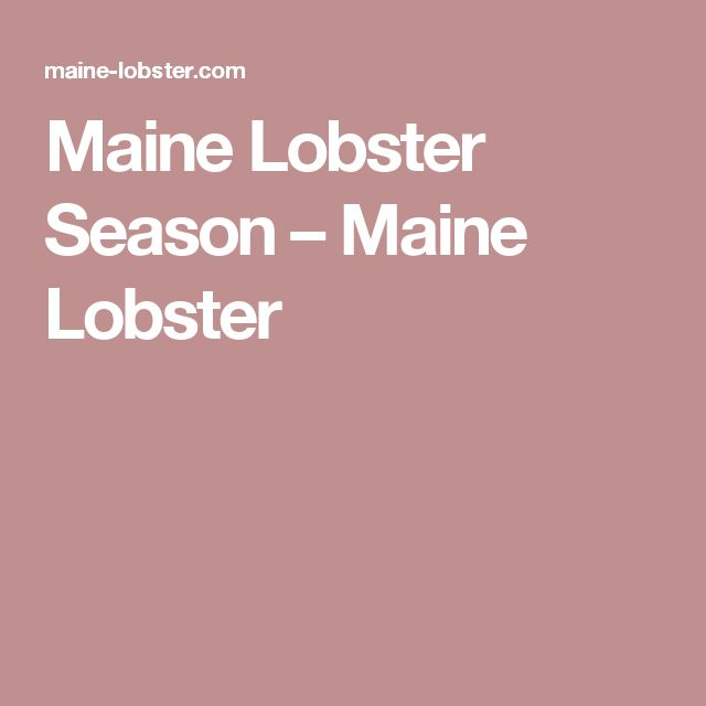 Maine Lobster Season – Maine Lobster