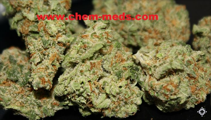 Buy Pineapple Express Kush Online. Pineapple Express Marijuana Strain is a bud with a Sativa dominant strain with a 60:40 sativa/indica ratio. Buy Marijuana Online | Buy Weed | THC and CBD Oil. Medical, Cannabis, Weed, Oil, THC, CBD, Wax, Edibles, Concentrates... Sale. Contact us now: ww.chem-meds.com. Call or Text: +1(214)210 9551