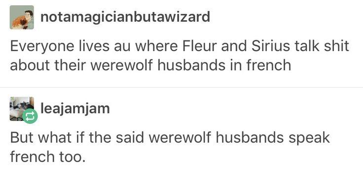 Remus Lupin, Sirius black, wolfstar, Fleur delacour, Bill Weasley, Harry Potter, hp