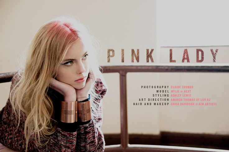Pink Lady Lookbook for Fashion Gone Rogue | cover