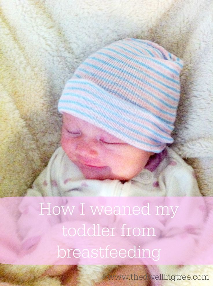 How weaning my toddler happened. A guide to a gentle approach to weaning from breastfeeding.