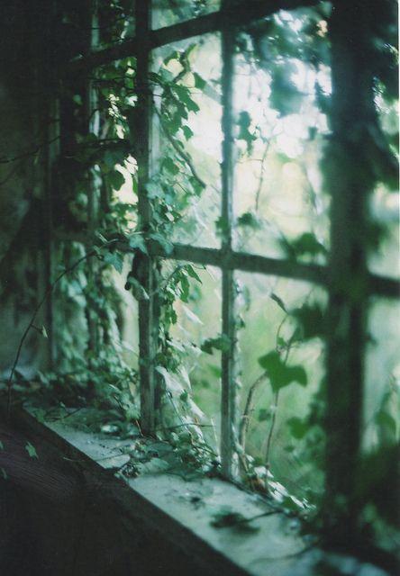 by Sid Black, via Flickr