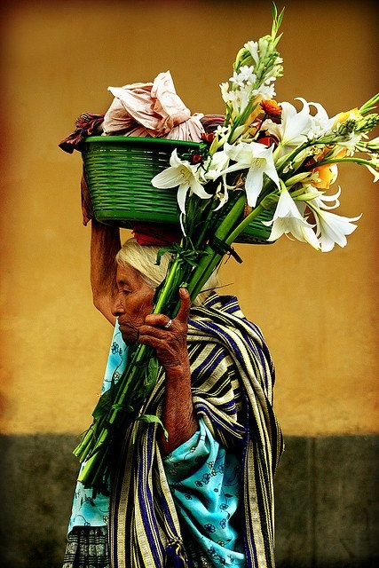 Flower seller, Guatemala http://www.flickriver.com/photos/ivancastroguatemala/1954003566/