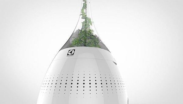 Bonbõn es un bio purificador de aire inteligente que funciona con energía solar y cuya materia prima principal es una planta y los microorganismos que viven en ésta.
