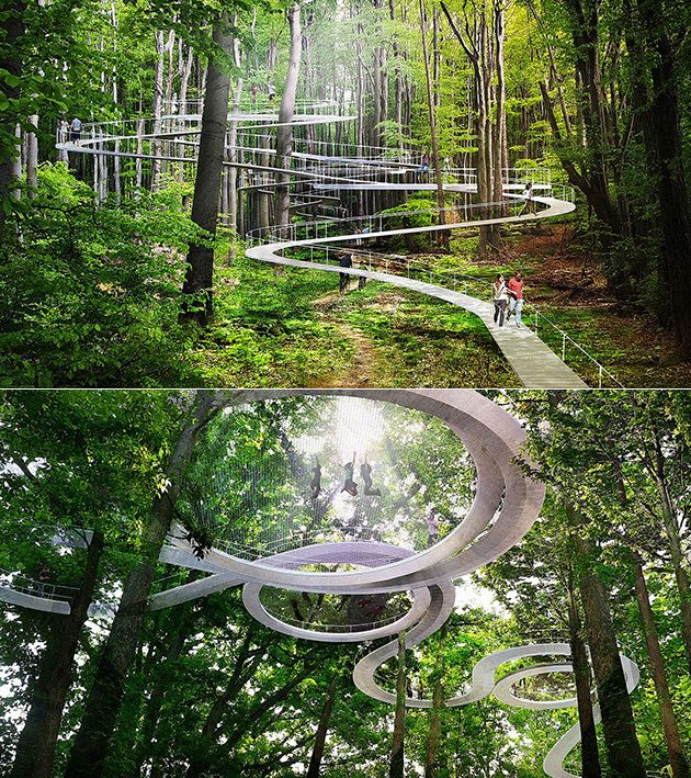 Amazing Forest Park Features Treetop Pathways That Double as Giant Trampolines