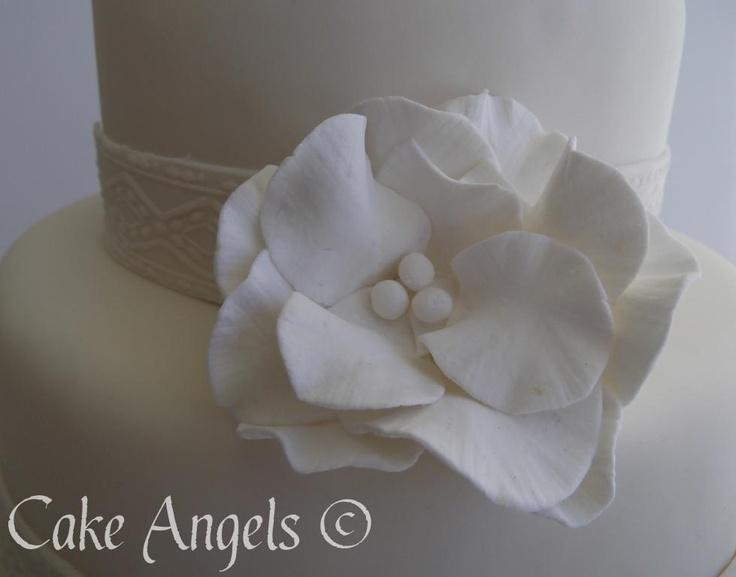 White Vintage Rose