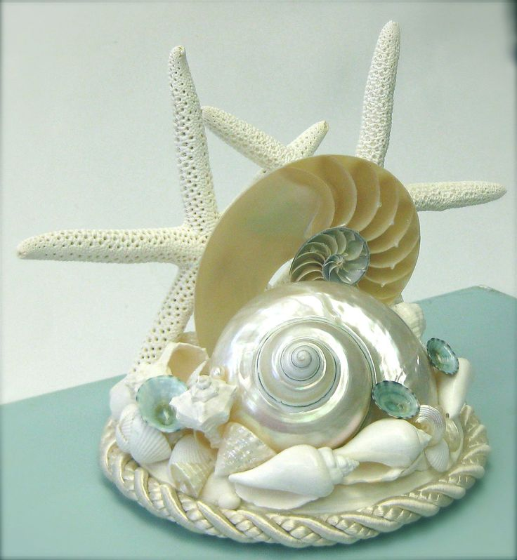 nautilus cake topper with our colors!: Wedding Cake Toppers, Nautilus Cake, Beach Weddings, Beach Wedding Cake, Beautiful Cake, Wedding Cakes, Beach Coastal, 65 00, Starfish Nautilus
