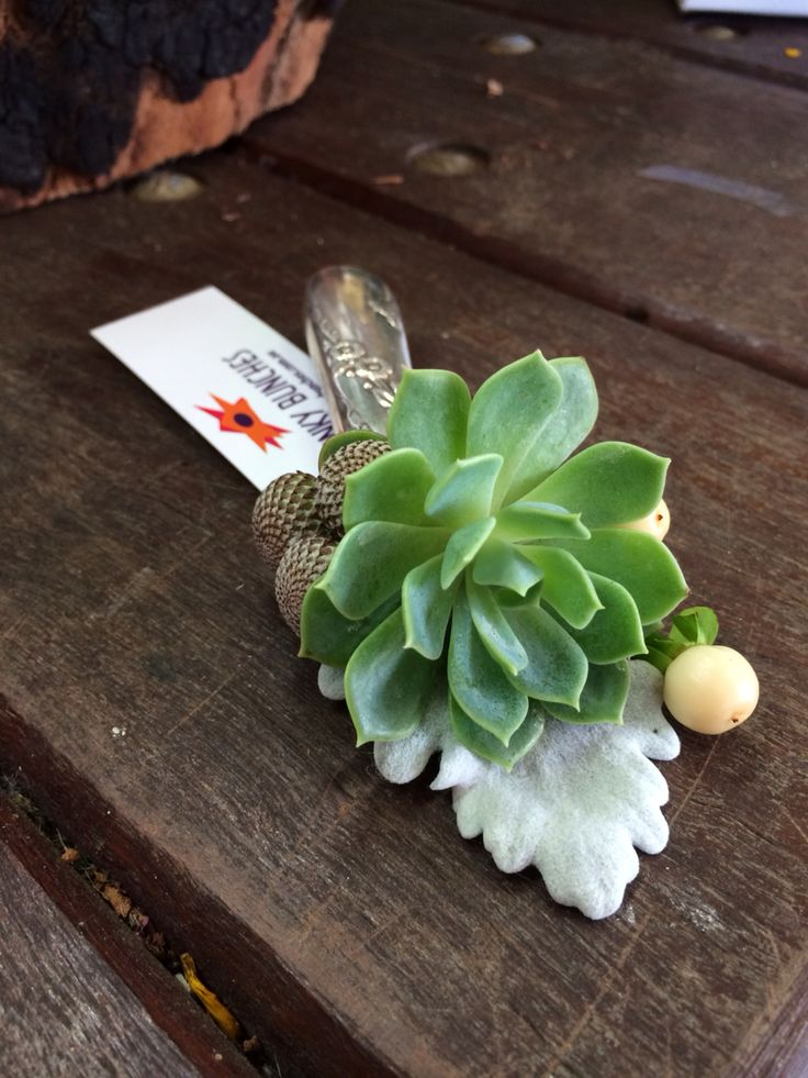 Succulent buttonholes with recycled silverware!