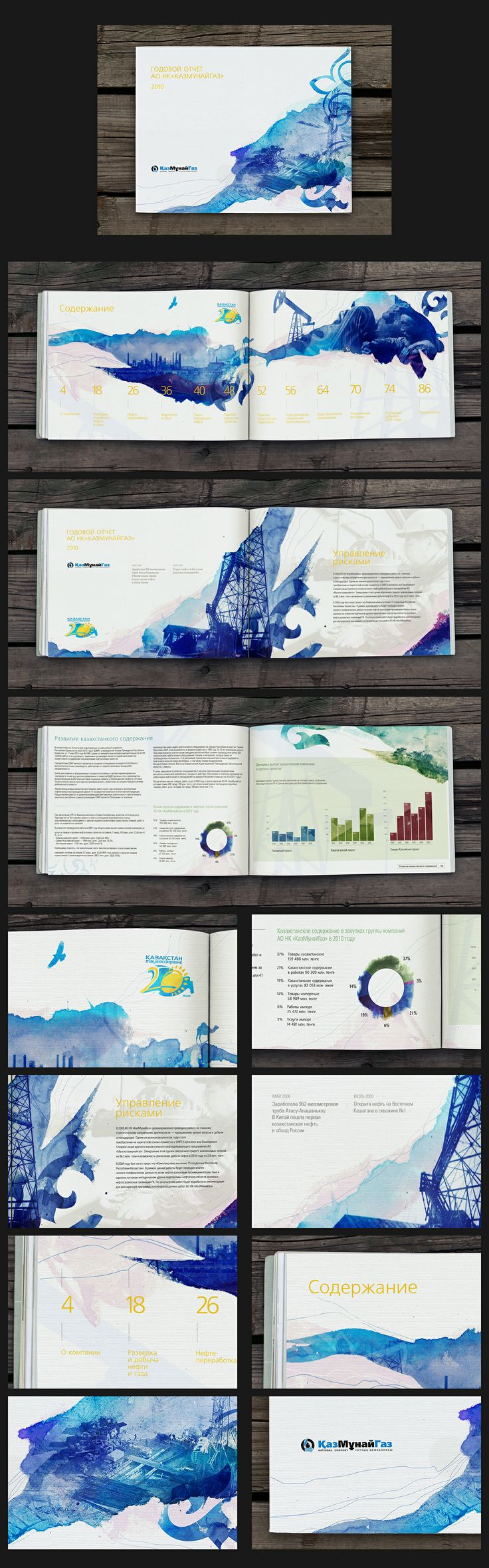 Annual report, the use of colour and shapes create the style of this whole book, graphic elements stay the same across the whole publication.
