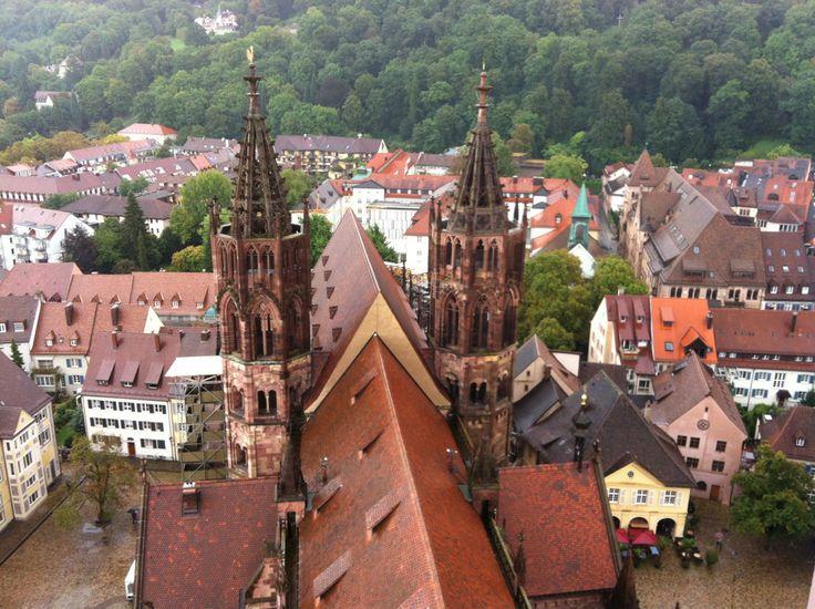 In Kürze gelangt man zu Fuss zur Münster Plattform und sieht über die Dächer von Freiburg den schönsten Turm der Christenheit. Sehr gemütlicher Ausflug und Geschichte pur. http://www.freiburgermuenster.info/