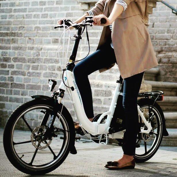 Magnum Premium Folding Bike