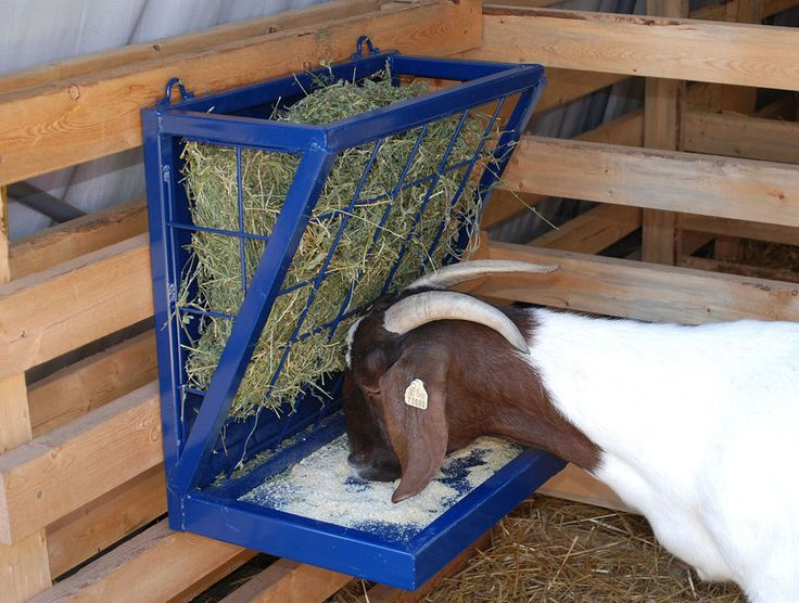 Goat Hay Feeder | new goat feeder I built out of old stack ...