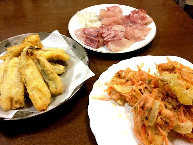 2人では食べきれませぬ… - 2件のもぐもぐ - カンパチとイカの造り。穴子の天ぷら。小エビのかき揚げ〜 by 加賀 理資