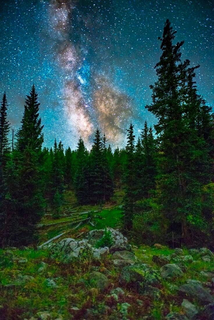 ***Starry sky above the Ute Trail (White River National Forest, Colorado) by Adam Dorn