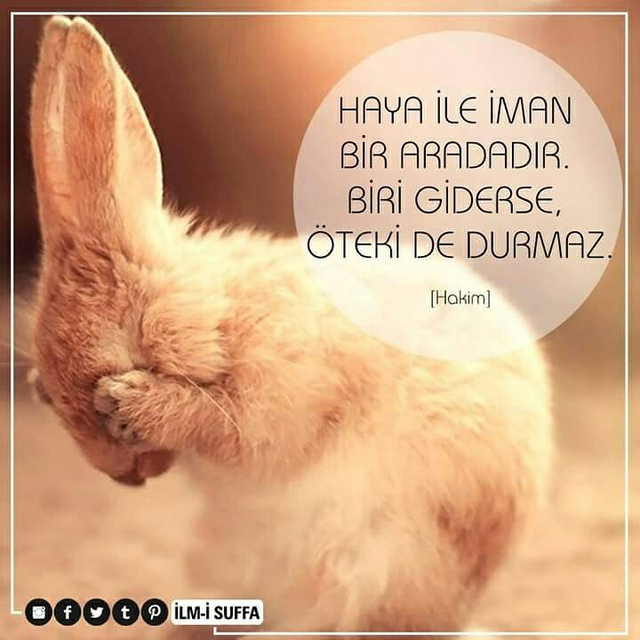 Haya İle İman Bir Aradadır. Biri Giderse, Öteki De Durmaz. [Hakim] #haya #iman #durmaz #gider #hakim #türkiye #istanbul #rize #trabzon #üsküdar #memleket #eyüpsultan #mekke #medine #ilmisuffa