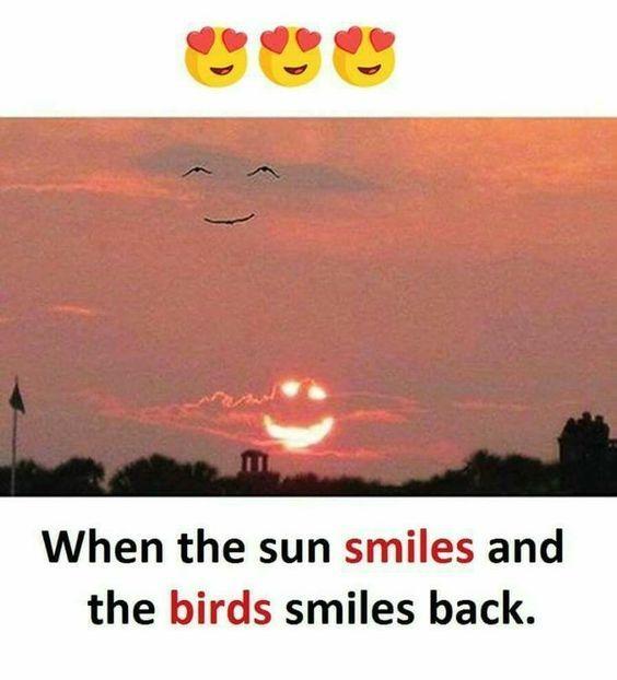 Meme - Sonne lacht, die Vögle auch! | Witzige sprüche ...