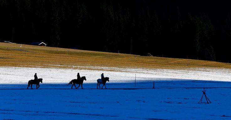 Pessoas em cavalos passam por campo coberto de neve perto de Haller, na Áustria