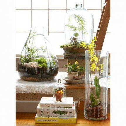 Terrarium, le mini jardin s'invite dans votre déco     Pour en savoir plus : Un terrarium agrémenté de… Lego® ! - Marie Claire Maison                                                                                                                                                                                 Plus