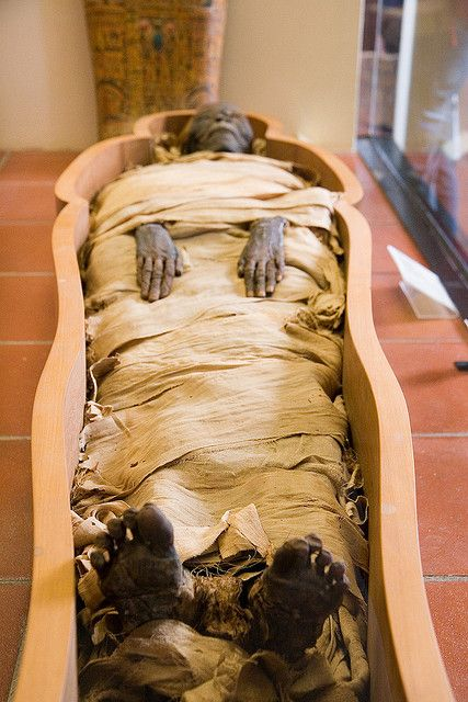 carbon dating egyptian mummies Egyptian mummies are dead pharaohs (kings)  carbon dating indicated that the skull of the female mummy was probably 50 to 200 years older than the torso.